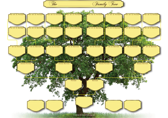 Generation Family Tree Chart