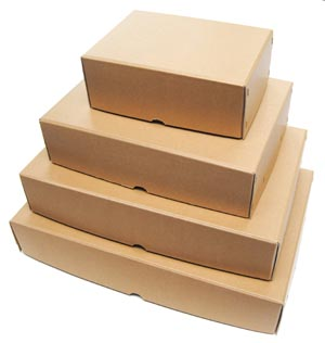 Acid Free Archival Storage Boxes And Envelopes For Books And Microfiche